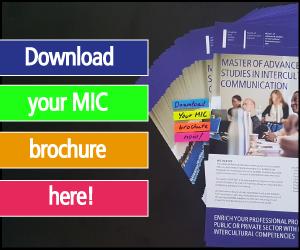 Intercultural Communication Masters Brochure